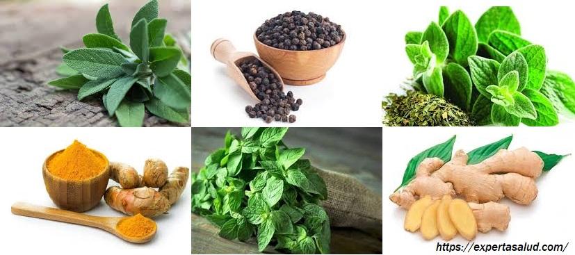 15 hierbas y especias con fuertes beneficios para la salud